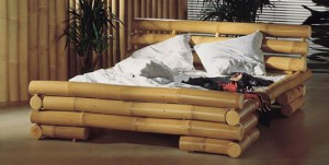 Бамбук: качество и области применения