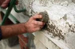 Плесень на стенах загородного дома : как с ней бороться?