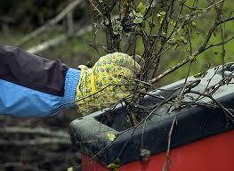 Измельчитель для сада - необходимое средство садовода